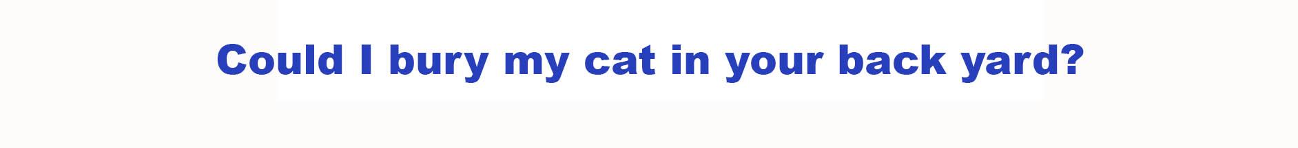 пример употребления глагола Could