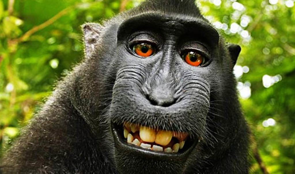 ugly selfie