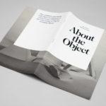 The Object.  Особенности дополнения в английском предложении